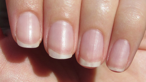 cuticle-closeup