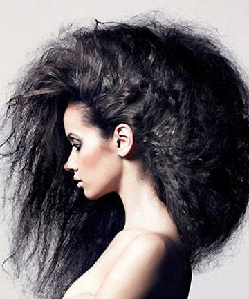 total-beauty-frizz-fighter-slide-1